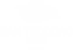 Hotel San Teodoro logo white