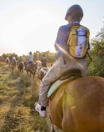 riding horse hotel san teodoro